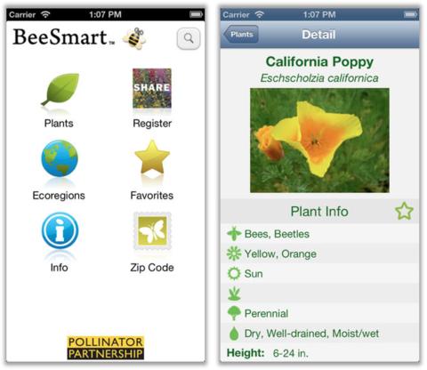 Gardening App BeeSmart