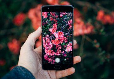 Tech-Savvy Gardener: 10 Best Gardening Apps You Should Try