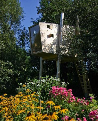 Modern Magic Dornob Tree House