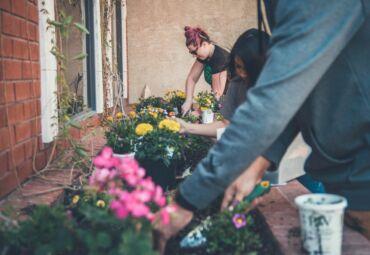How to Prepare for Your Spring Garden — The No-Nonsense Way