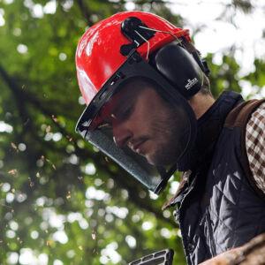 Forestry Safety Helmet